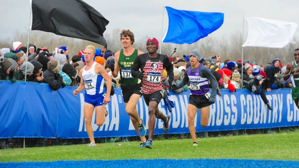 Different Paths Lead To Similar NCAA XC Results