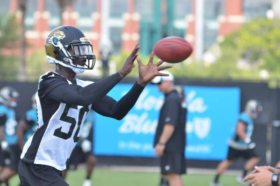 Telvin Smith, courtesy of Jaguars.com