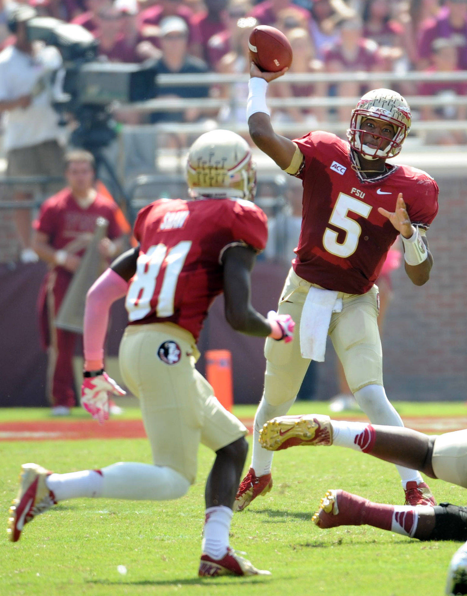 Quarterback Jameis Winston (5) throws the ball to wide receiver Kenny Shaw (81). Mandatory Credit: Melina Vastola-USA TODAY Sports