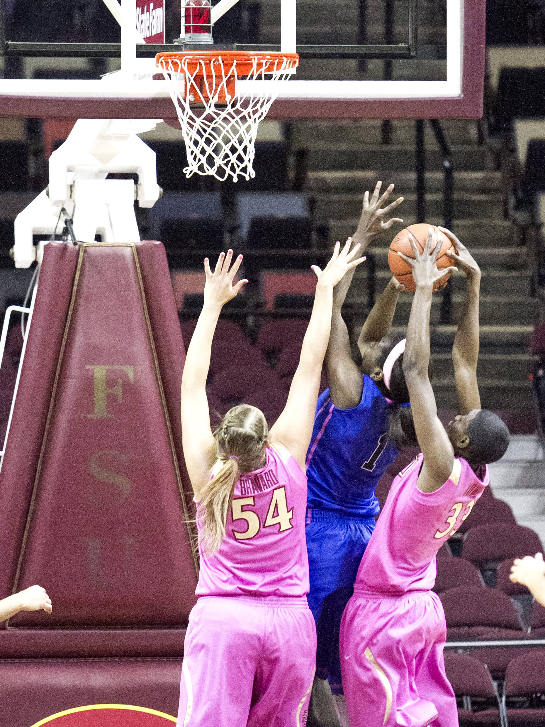 Cierra Bravard (54), Natasha Howard (33), FSU vs Duke  02/12/2012