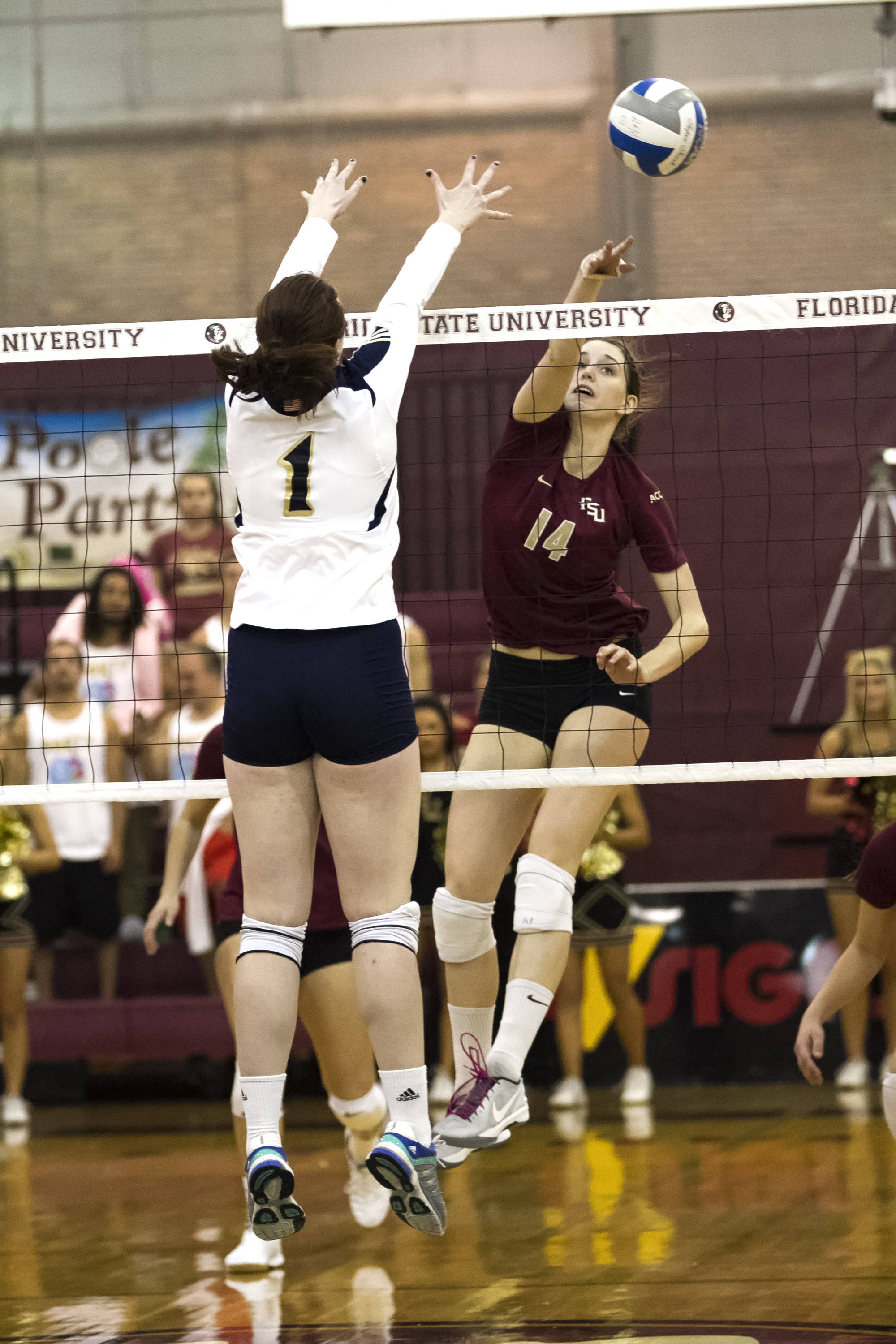 Ashley Neff (14), FSU vs Notre Dame, 11-17-13, (Photo by Steve Musco)