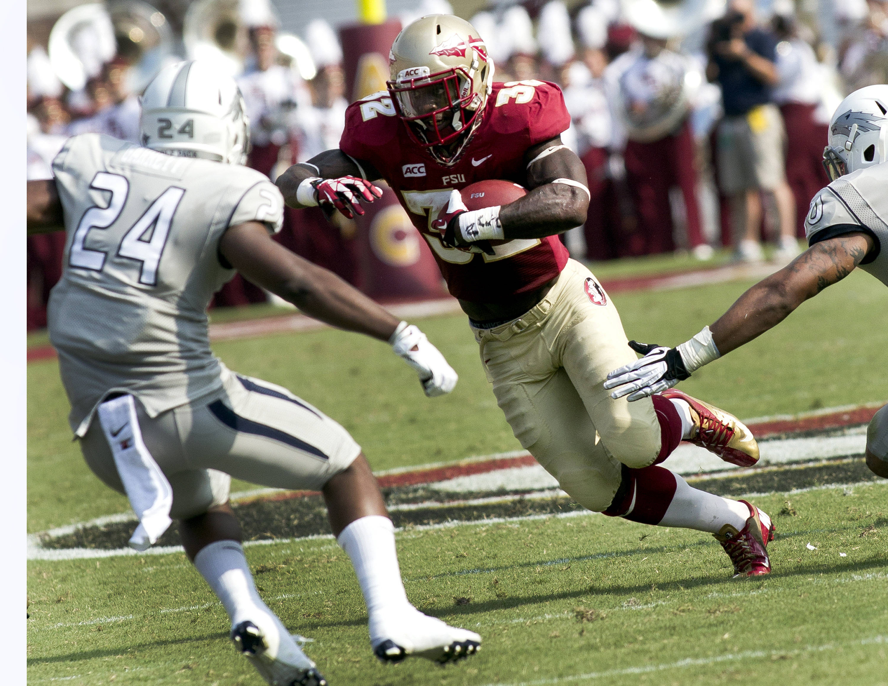 James Wilder, Jr, (32), FSU vs Nevada,  9-14-13, (Photo by Steve Musco)