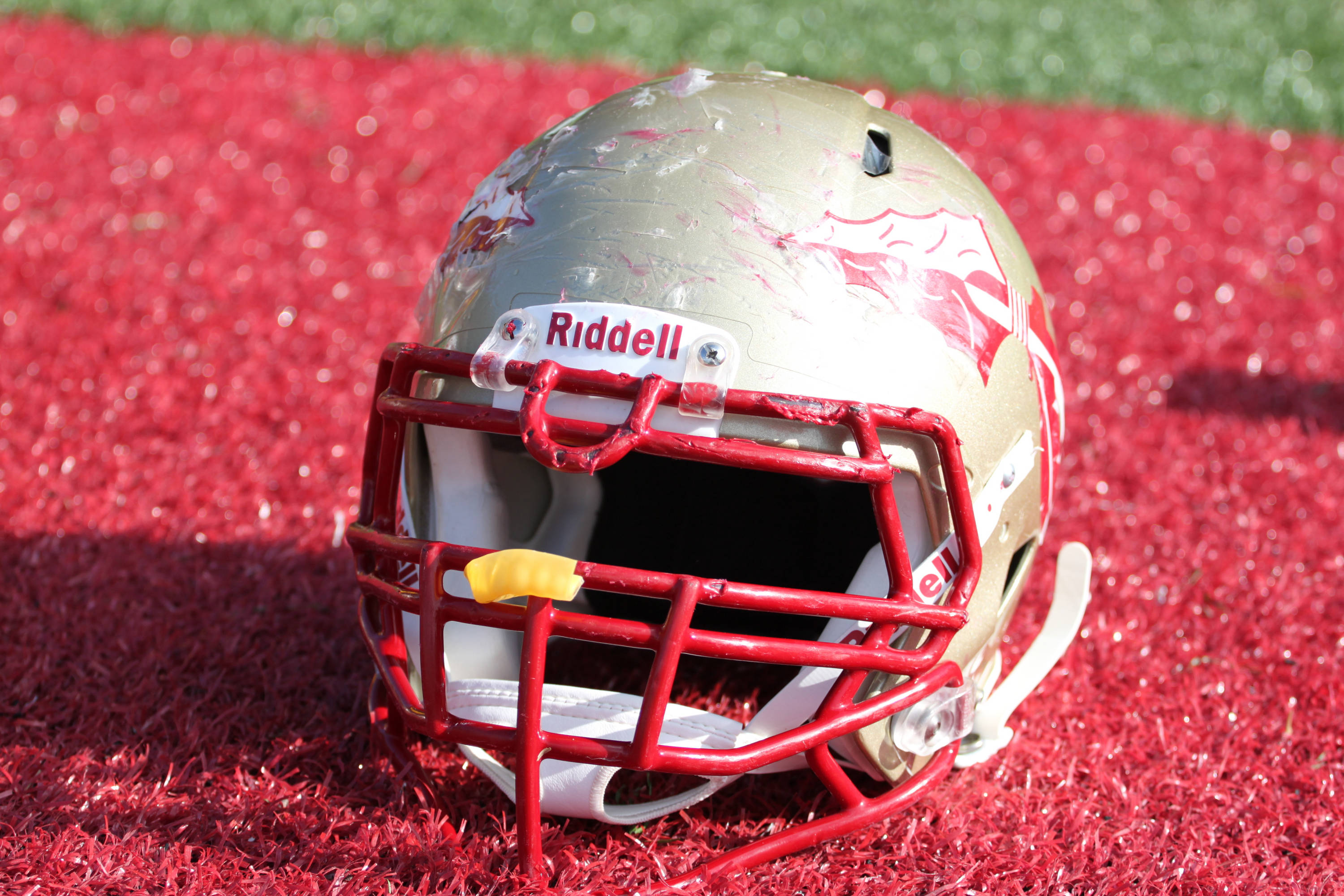 Florida State helmet front view