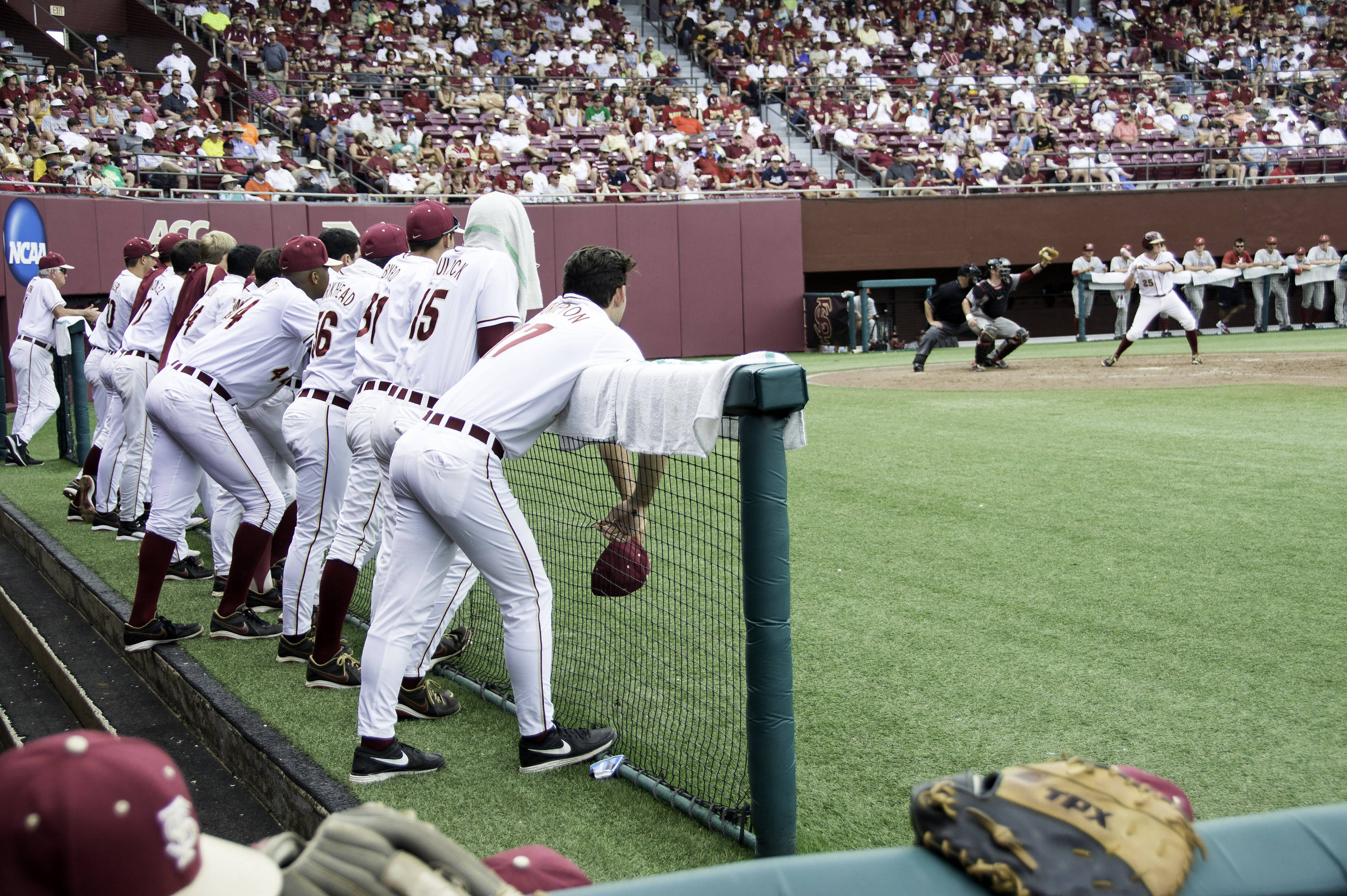 The Seminoles at the 2014 Tallahassee Regional