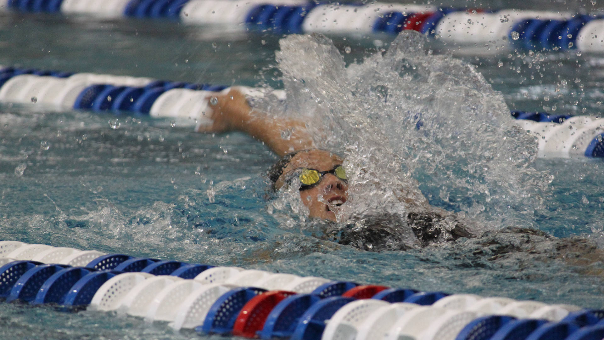 Women's NCAA Swimming and Diving