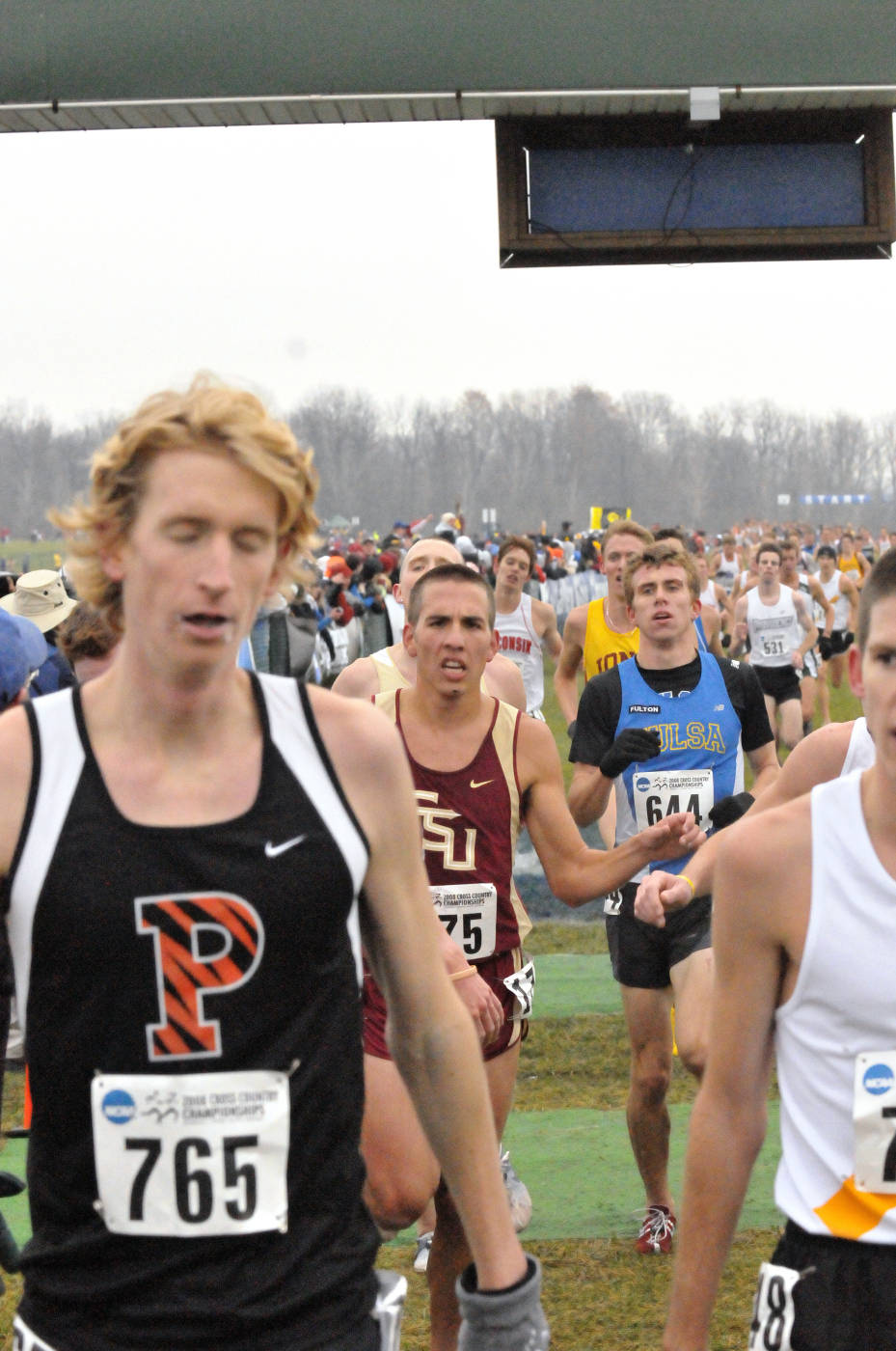 Junior Daniel Roberts at the 2008 NCAA Cross Country Nationals.