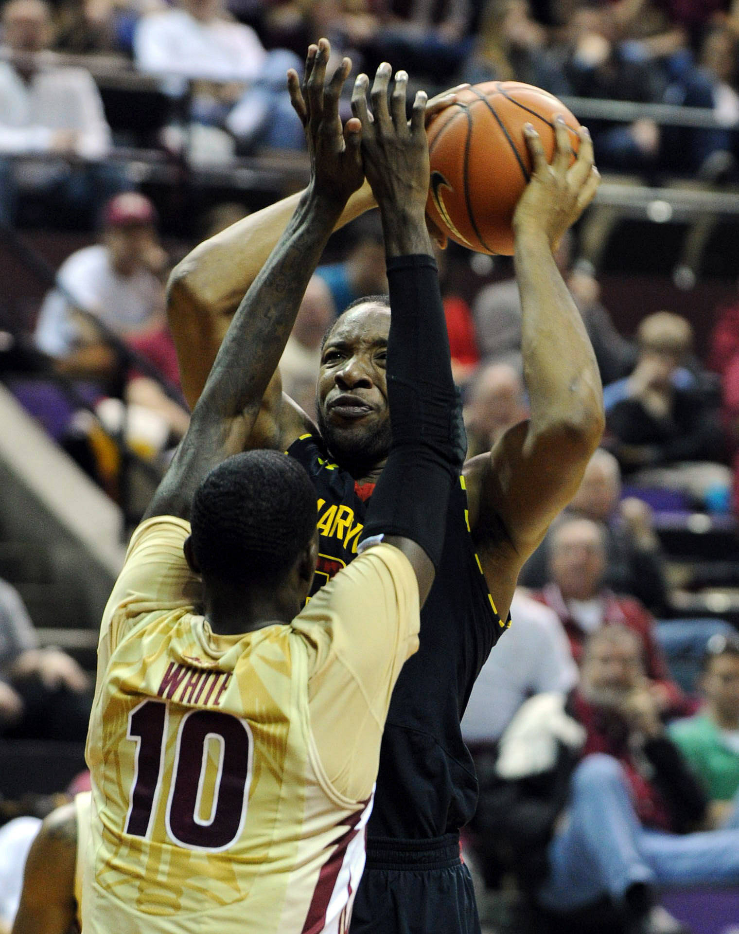 Jan 12, 2014; Tallahassee, FL, USA; Maryland Terrapins guard Dez Wells (32) is defended by Florida State Seminoles forward Okaro White (10) during the first half of the game at the Donald L. Tucker Center. Mandatory Credit: Melina Vastola-USA TODAY Sports
