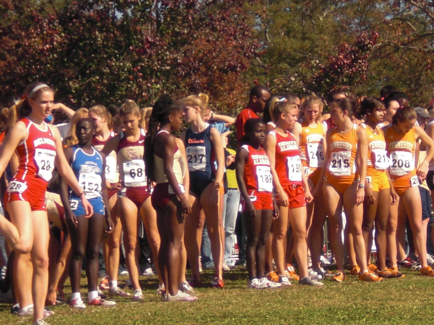 The 2009 South Regional Championships