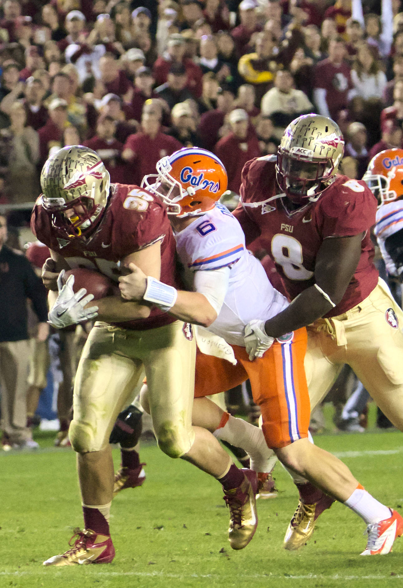 Bjoern Werner fumble recovery, FSU vs Florida, 11/24/12. (Photo by Steve Musco)