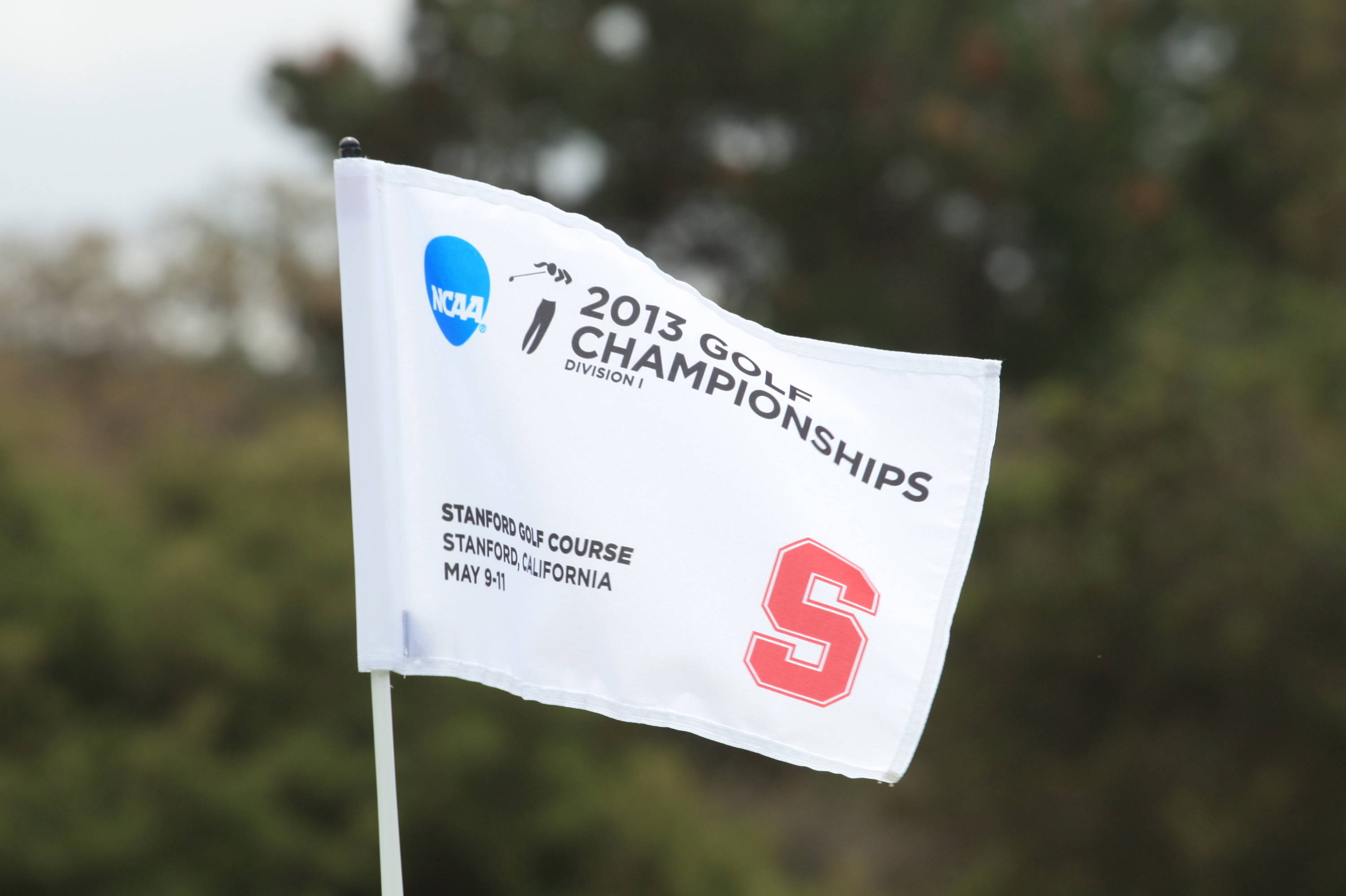 NCAA Flag -- 2013 West Regional