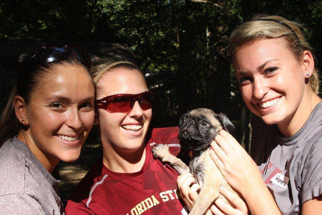 Sarah Hamilton (25), Ashley Stager (9) and Lauren Varsalona (17) benefit the Leon County Humane Society with a Dog Wash