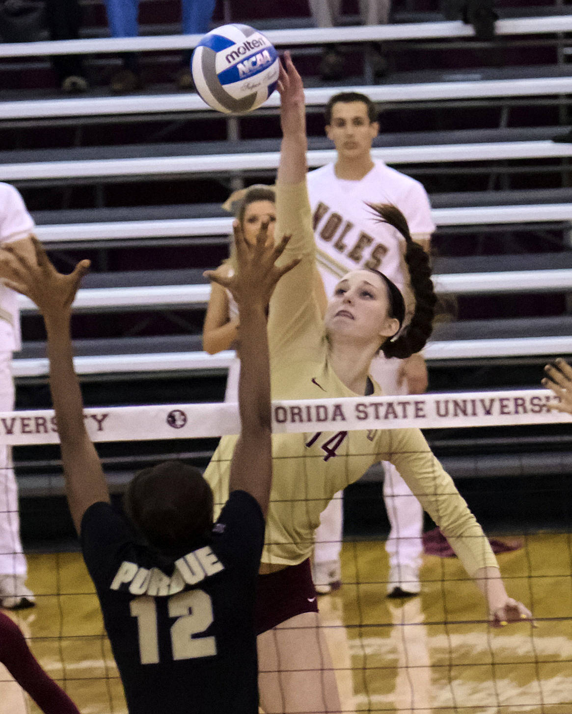 Ashley Neff (14), FSU vs Purdue, 12/01/12. (Photo by Steve Musco)