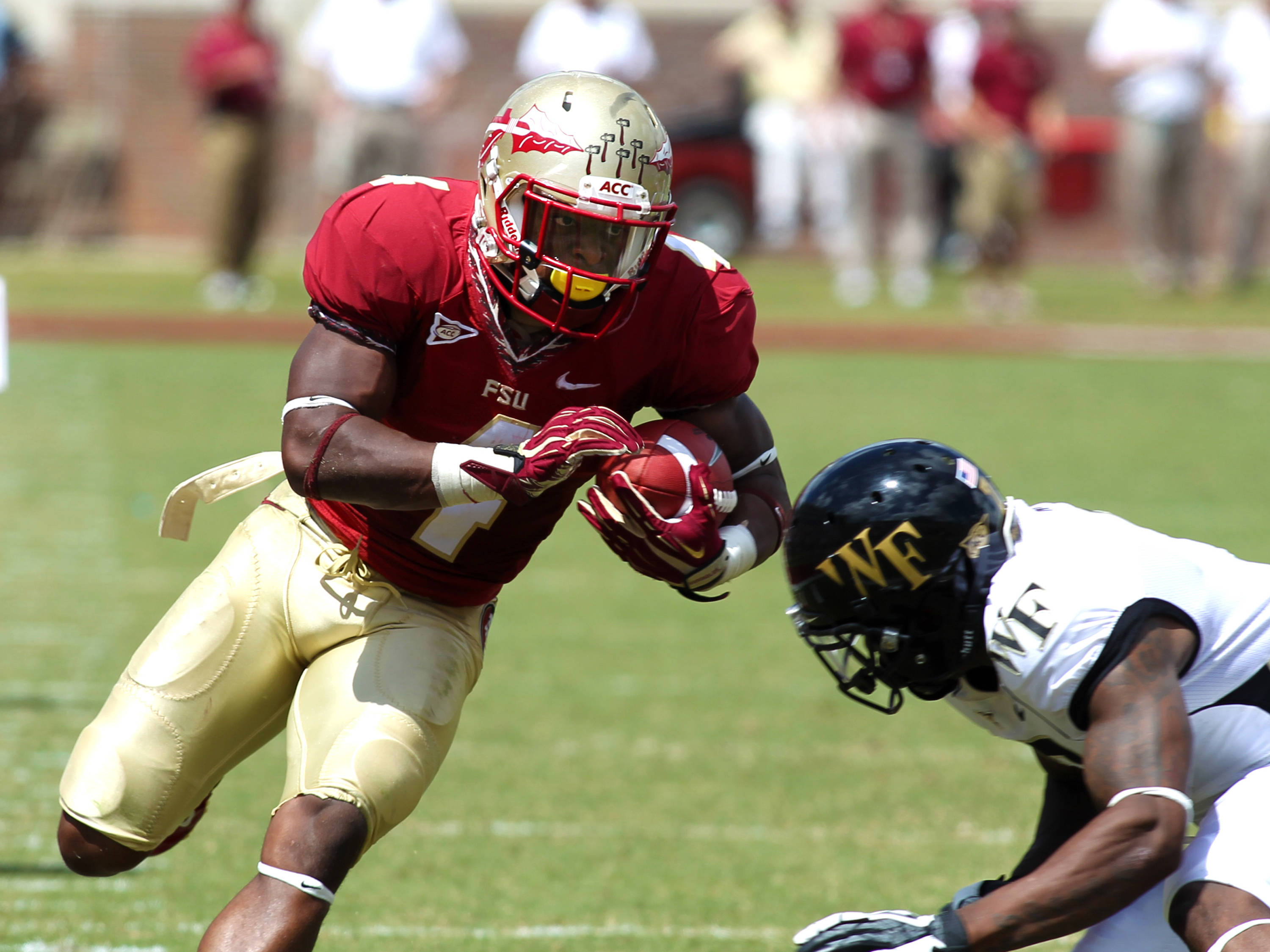 Chris Thompson (4) bracing to get hit , FSU vs Wake Forest, 9/15/12 (Photo by Steve Musco)