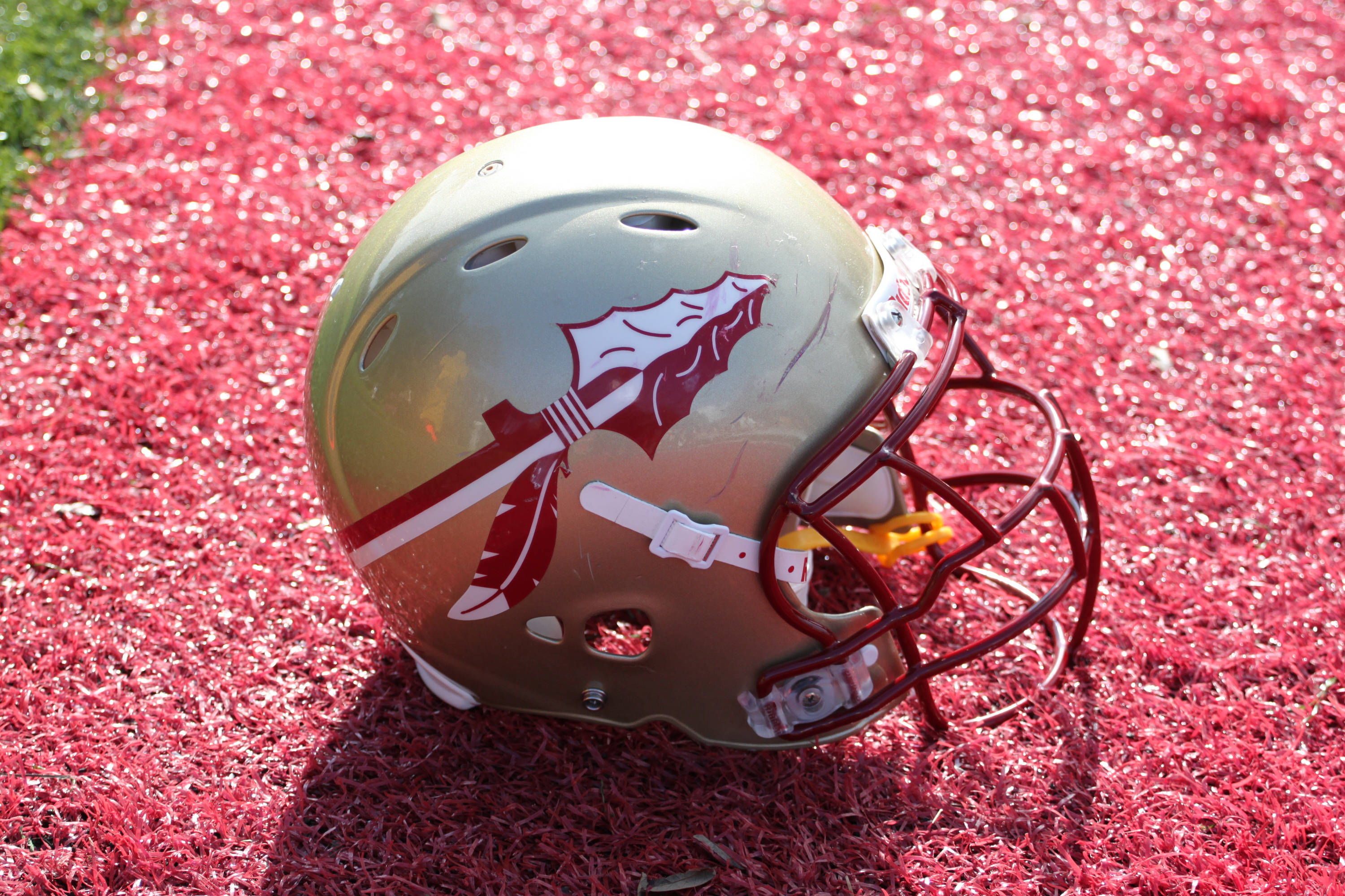 Florida State helmet side view