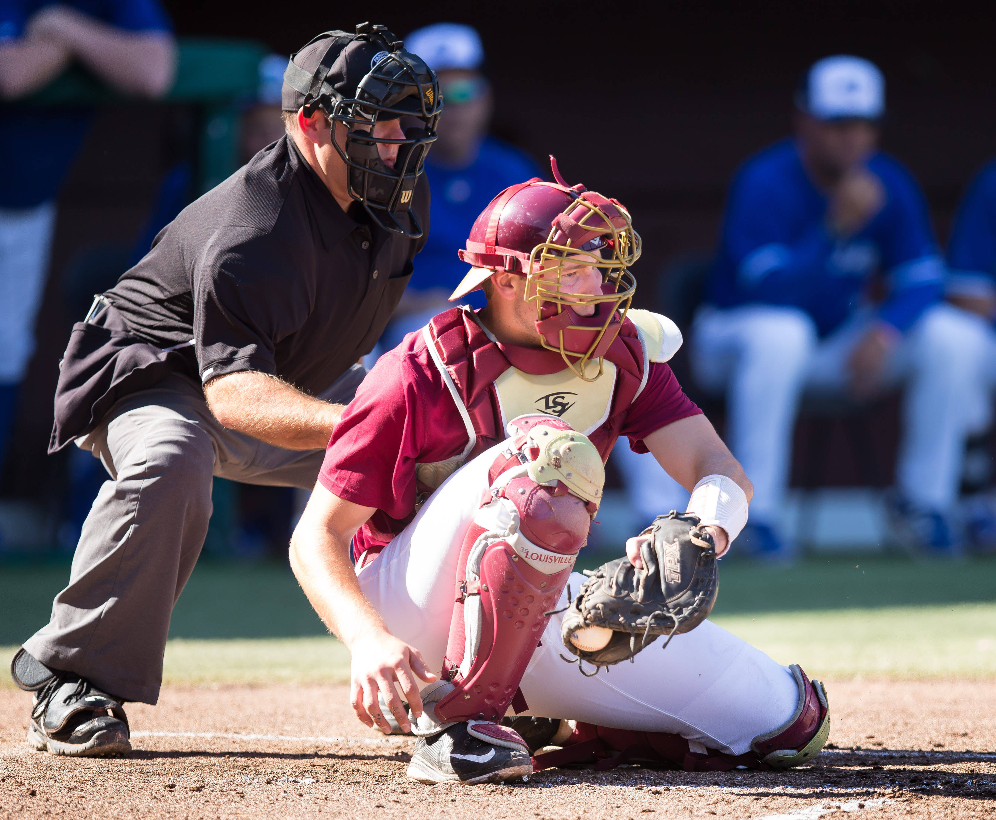 Florida State vs. Ontario Blue Jays