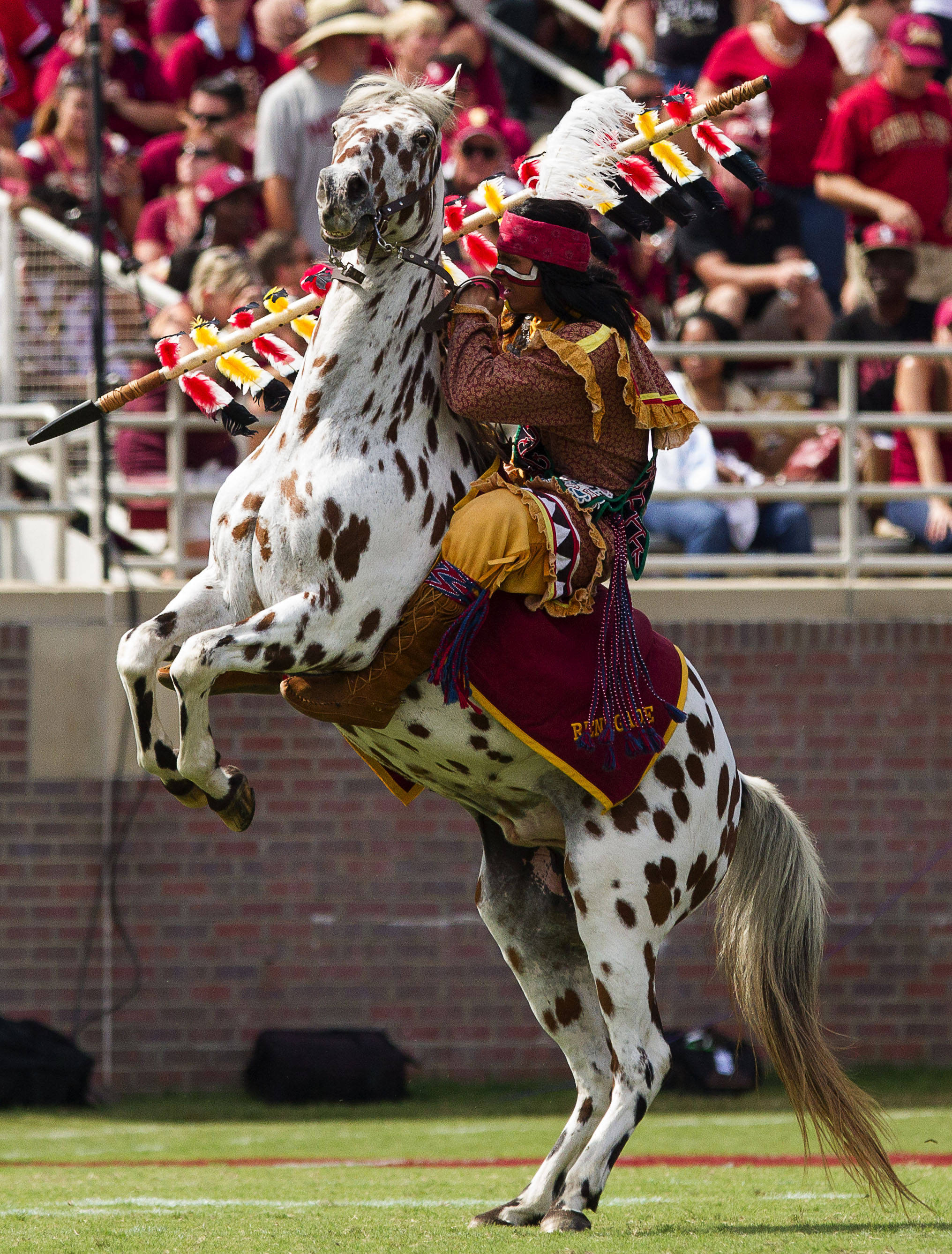 Chief Oceola raises the spear during FSU Football's 63-0 shutout of Maryland on Saturday, October 5, 2013 in Tallahassee, Fla.