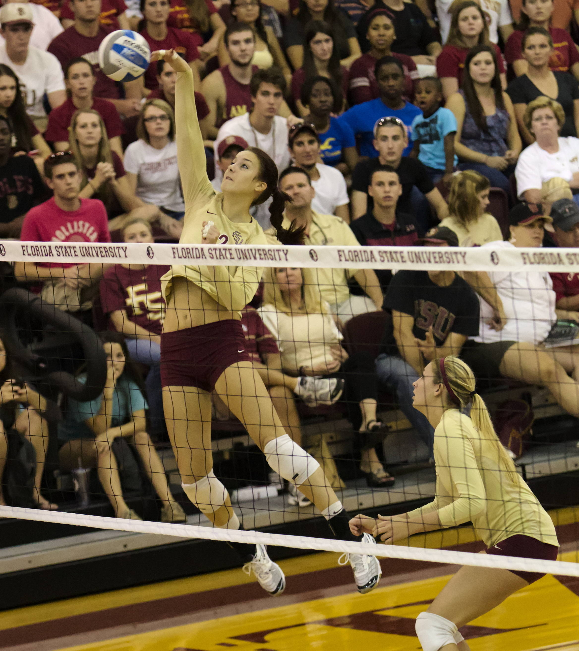 Marija Milosavljevic (12), FSU vs Florida, 10/24/12 (Photo by Steve Musco)