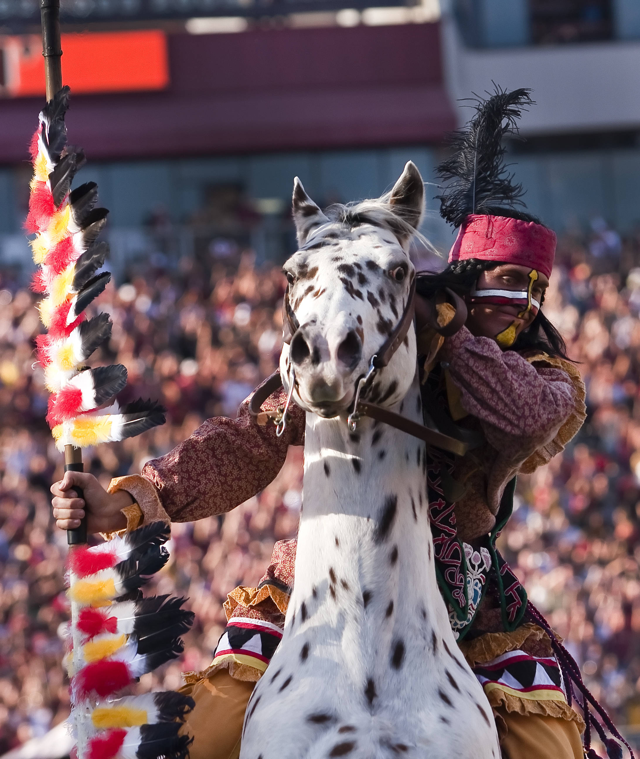 Chief Osceola and Renegade, FSU vs Miami, 11/12/2011